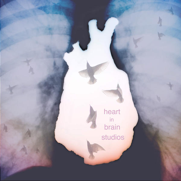 Heart in Brain Studios